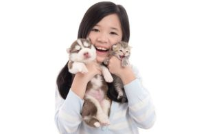 China-pet-food-market-1512PETchina.jpg