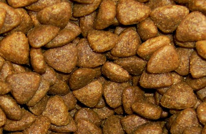 cat-food-kibble