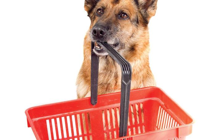 Consumer pet food trends 1604petconsumer