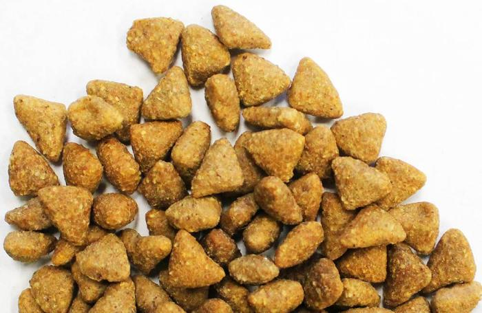 The challenges of extruding high-meat pet food | PetfoodIndustry com
