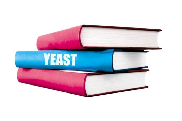 books stacked yeast knowledge
