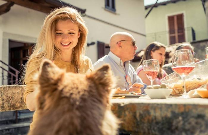 humans-dog-table-eating.jpg
