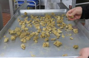 Freeze-dried-meat-ingredient
