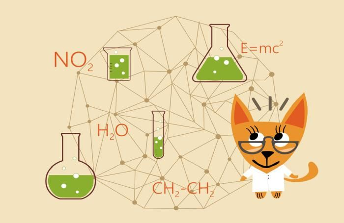 chemistry-science-cat