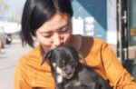 china-dog-woman.jpg