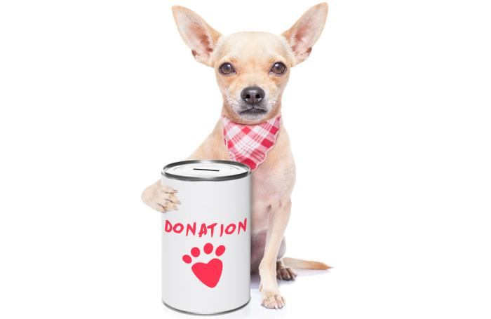 7 Pet Food Companies That Give Back To People Pets Petfoodindustry Com