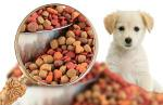 Pet-food-research