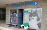 pet-food-store-Mexico
