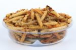 mealworms-insect-novel-protein
