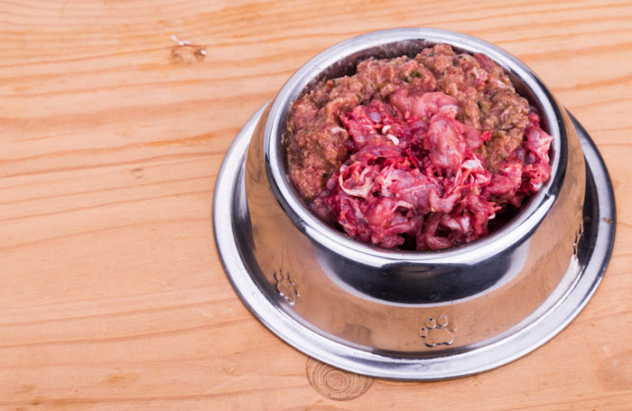 Raw-meat-pet-food-bowl