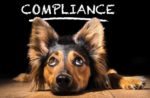 compliance-1707PETsafety.jpg