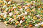 Pet-food-beans-ingredient