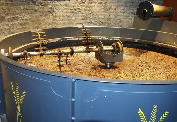 Dried distillers grains might increase cat meals palatability