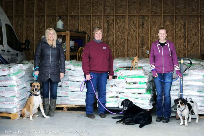 Pet meals firm donates to shelter pets in want