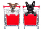 dogs-in-shopping-carts