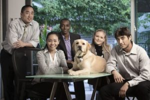 ethnic-groups-dog-business.jpg