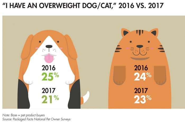 overweight-pet-agreement_tab21