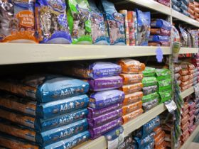 Pet-retail-pet-food
