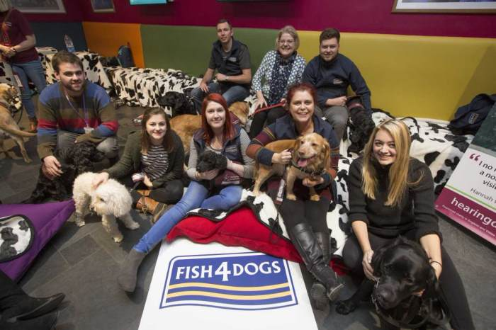 Fish4Dogs helps listening to canines at UK theatre efficiency