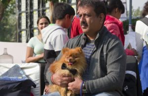 Pomeranian-dog-India-man.jpg