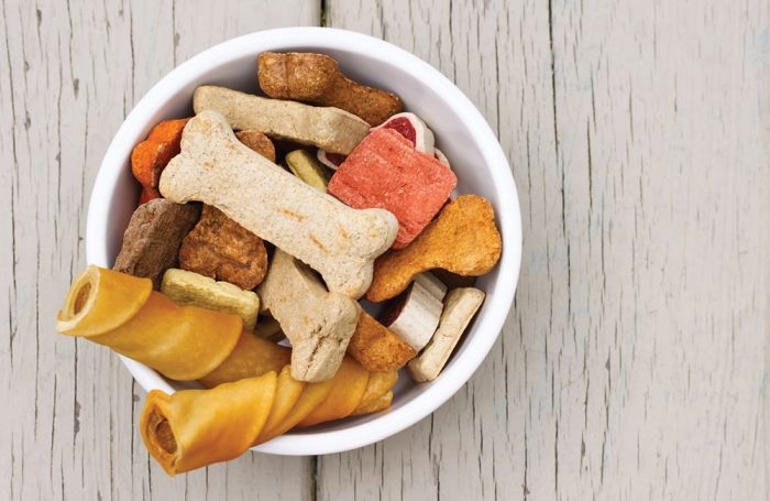 How useful components are influencing pet treats