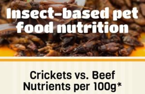 Insect_based_pet_food_nutrition_INFOGRAPHIC_Main_Image.jpg