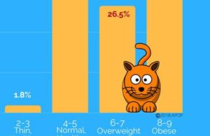 APOP-cats-obese-US-2017.jpg
