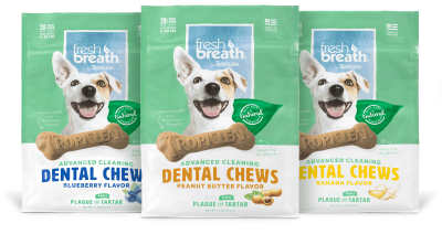 TropiClean-Fresh-Breath-Dental-Chews-Three-Flavors