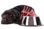black-dog-raw-meat-bowl.jpg