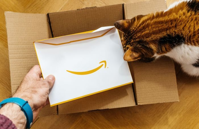 cat-Amazon-online-ecommerce-delivery.jpg