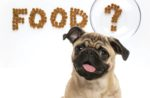 pet food questions