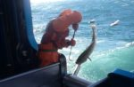 Alaska-Leader-cod-fish-worker.jpg