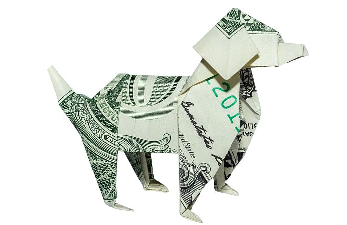 Money-origami-dog-business-cash-dollar