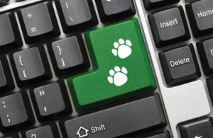pet prints-computer-ecommerce