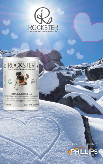 The-rockster-canned-dog-food