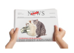 Fake-pet-food-news