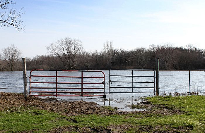 Gate-flooded-pasture