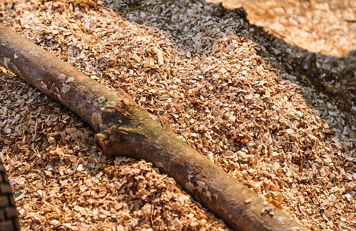 Shredded-Chip-Wood-branch-biomass.jpg