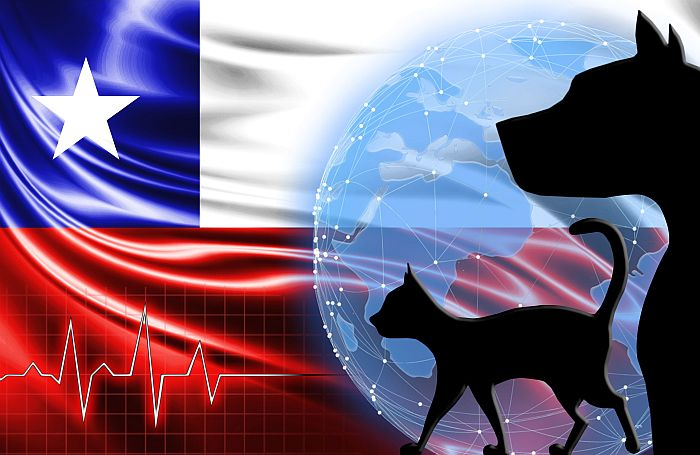 Chile-flag-dog-cat-world.jpg