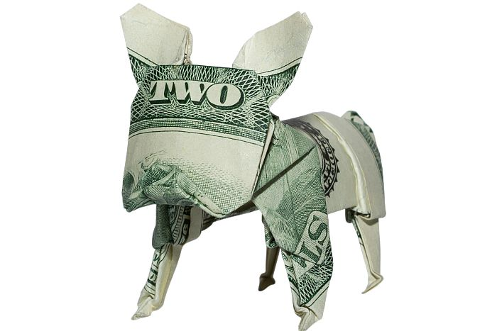 Money origami bulldog dog business market