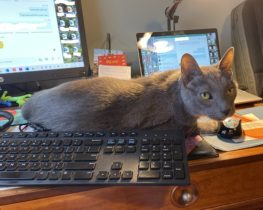 Deacon-working-from-home