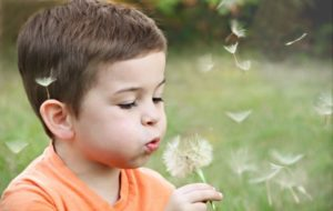 boy in orange shirt blowing dandelion