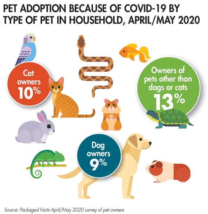 COVID-19 has led to some pet owners adopting animals specifically due to the pandemic and the changes it has caused in their lives