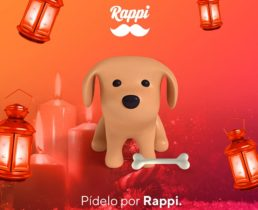 Rappi-dog-food-delivery