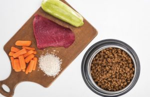 Pet-food-ingredients-and-kibble