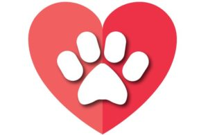 Pet-heart-paw-charity