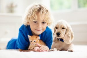 child boy dog kitten cute.jpg