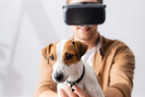dog-virtual-reality-VR-headset.jpg