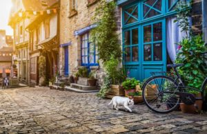 cat-Europe-street-village-quaint.jpg