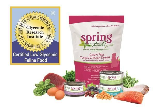 Spring Naturals Wet Dog Food